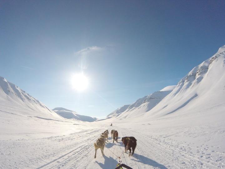 Arktiske eventyr 78 gradernord