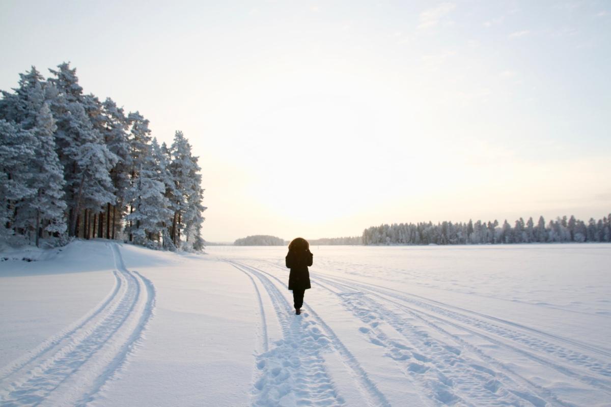 Vinteridyll på den finske landsbygda