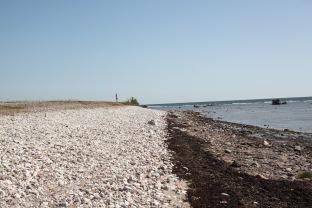 Gotland - Foto Hanne Marit Tobiassen 2
