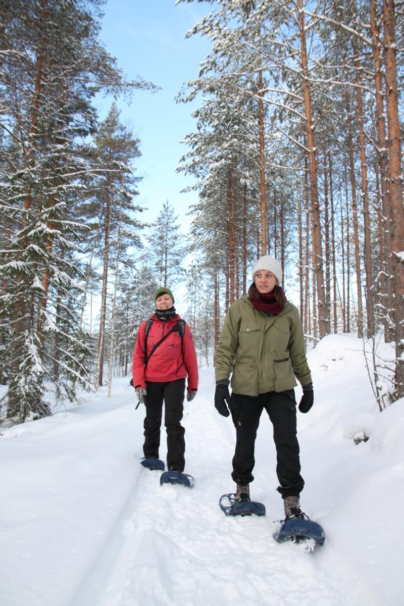 Aktiv vintermoro i Dalarna
