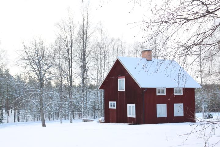 Aktiv vintermoro iDalarna