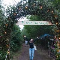 Into the Woods – bærekraftig musikkfestival i de svenske skoger